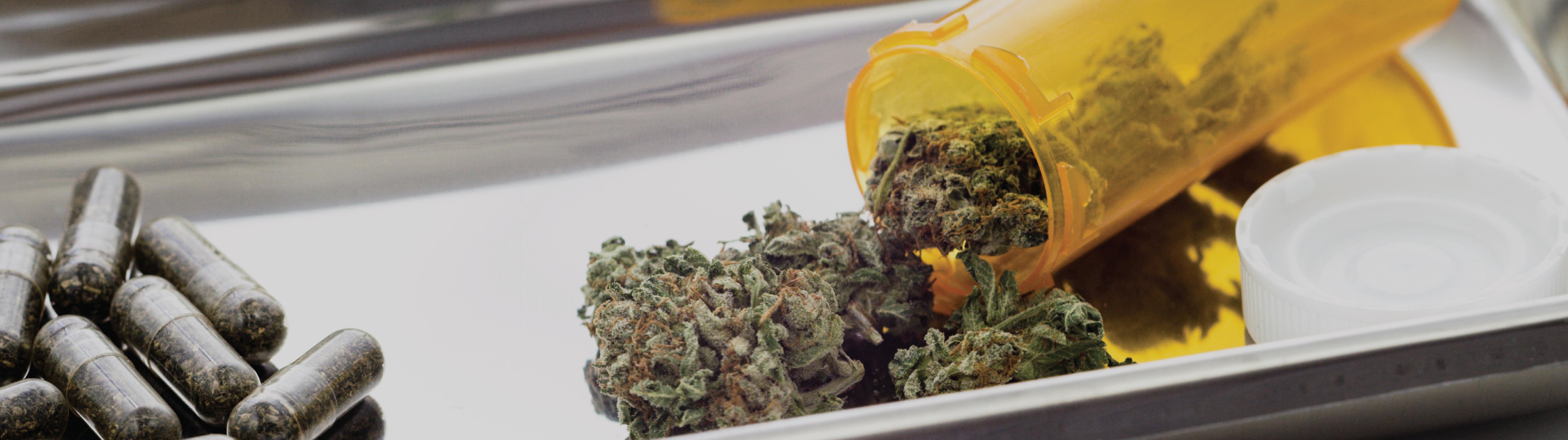 Cannabis Testing Banner-01-01